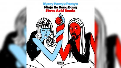 Steve Aoki remix