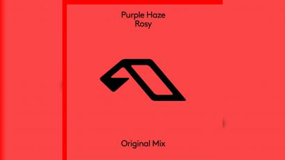 Purple Haze - Rosey